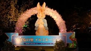 なばな (3).jpg